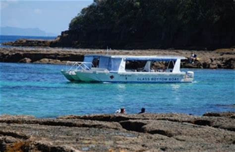 glass bottom boat trip goat island glass bottom boat goat island marine reserve tours leigh