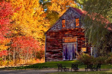fall colors 2017 what does past peak mean in fall foliage terms new