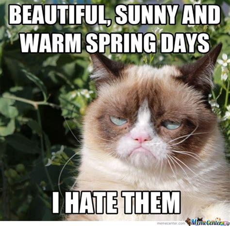 Spring Meme - summer running 171 fueledbylolz