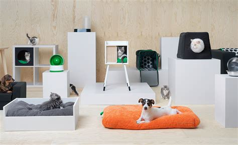 ikea dogs ikea pet furniture yes pet furniture evans on marketing