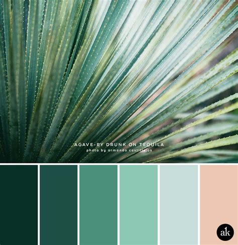 blue green color palette 191 best color images on colors color