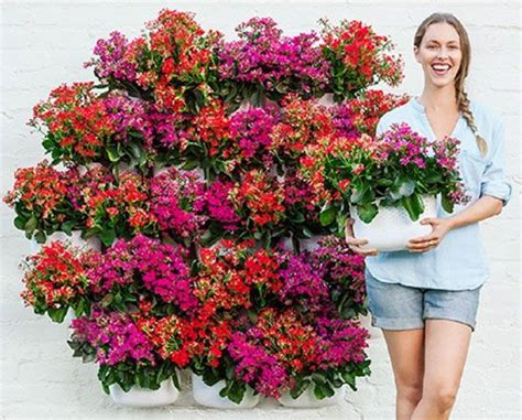 44 best images about vertical gardening on
