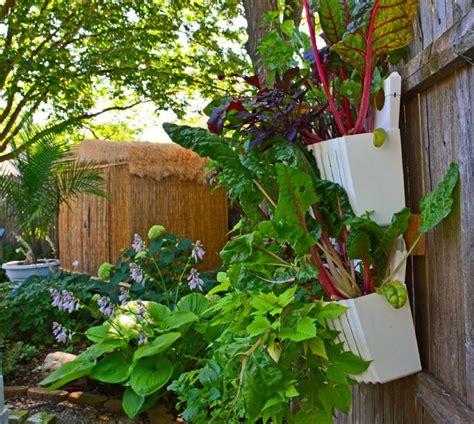garden katalog best vertical indoor plant from home and garden catalog
