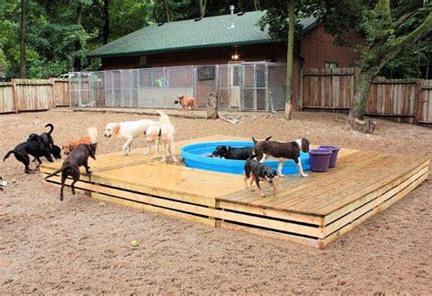 dog play area backyard dog pad dog boarding