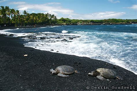 black sand beaches hawaii punaluu black sand beach