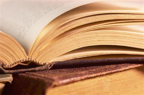 libri letti libri letti febbraio 2013 gattomur s weblog