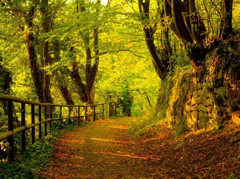 imagenes jardines otoño es oto 241 o fondos de pantalla es oto 241 o fotos gratis