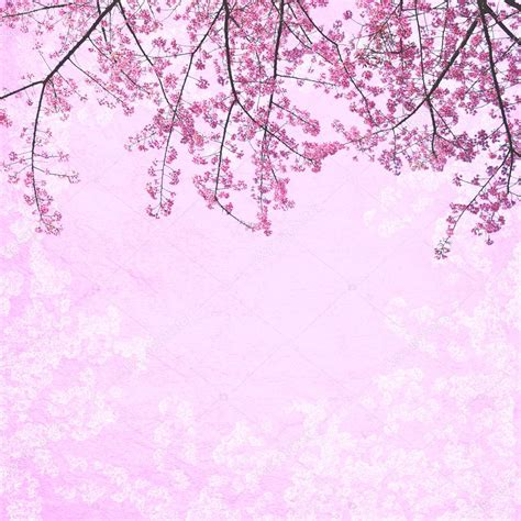 gambar wallpaper bunga sakura foto bugil bokep