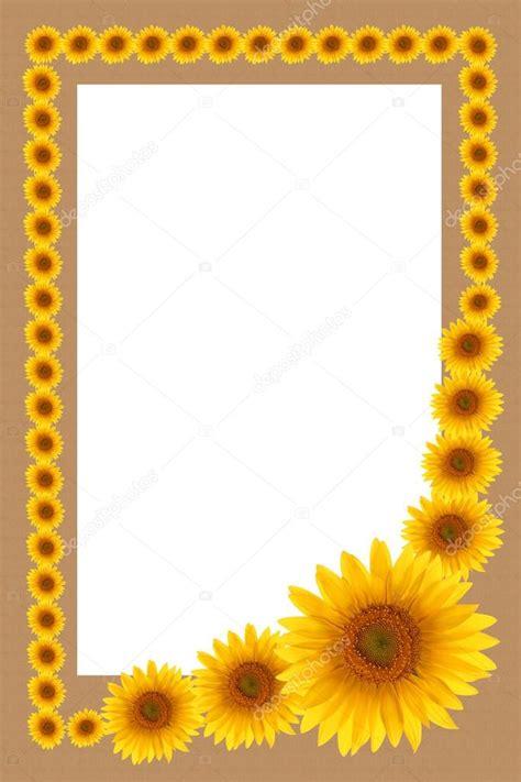 foto cornice gratis carta di girasole cornice fiore sfondi gratis foto stock