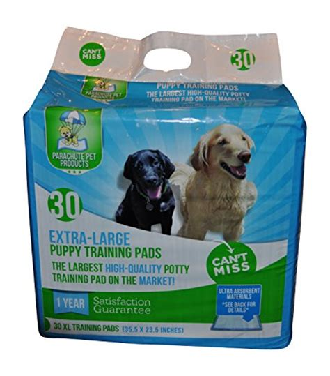 how to train your dog not pee in the house how to stop puppy eating their poop pee pad training your dog