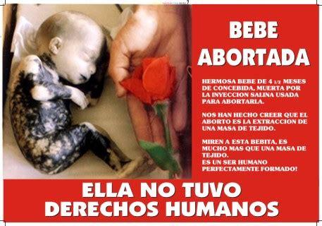 imagenes de como se mueve un bebe en el vientre el aborto el aborto