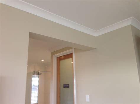 interior wall paint colour dulux  destruct