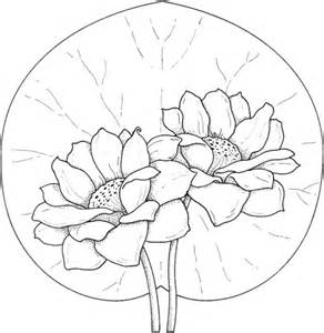 coloring page water lily simple water lily coloring pages