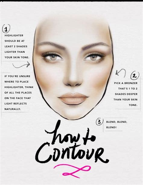 contour makeup diagram contour makeup map mugeek vidalondon