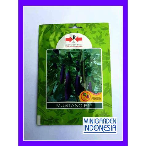 Bibit Terong Ungu Mustang 1 pack 1100 benih terong ungu mustang f1 panah merah bibit