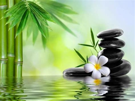 imagenes relajantes zen zen relaxation backgrounds peaceful zen