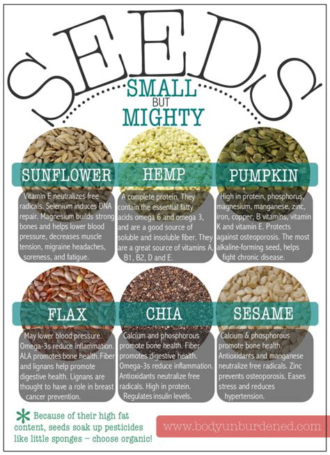 small but mighty the health benefits of seeds body