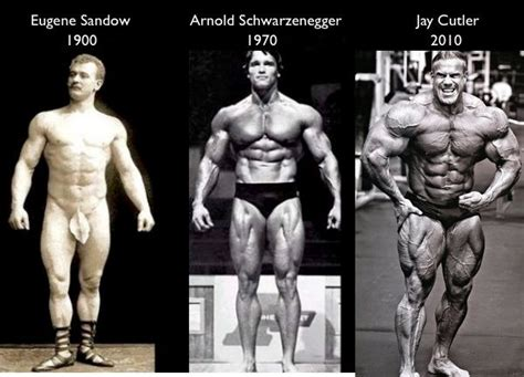 Dorian Yates Dy For Mass 5 Lbs Weight Gainer Penambah Bb Mutant Mass why ectomorphs the best type physique workout