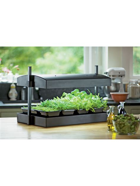 indoor herb garden kit  greens light garden gardener