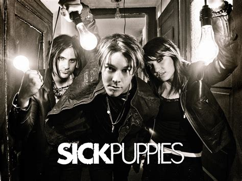 sick puppies members sick puppies sick puppies wallpaper 7552740 fanpop
