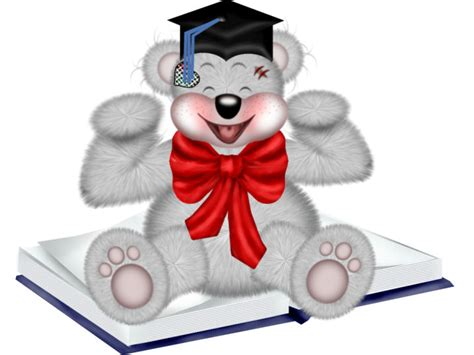 laurea clipart clip lauree e diplomi