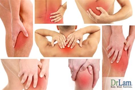 Msm Detox Symptoms Aching Shoulder Arm by Be Free Of Sudden Lower Back Learn Causes And