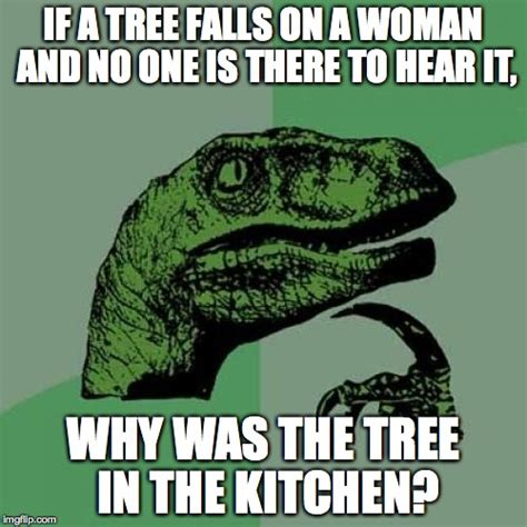 Woman Kitchen Meme - philosoraptor meme imgflip