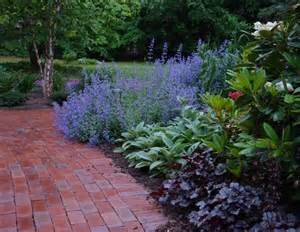 low maintenance landscaping plants lavendar and other plants gardens