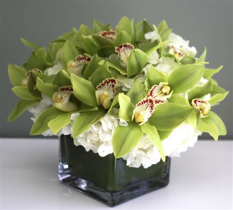 Lime Green Glass Vase Orchid Eleganza In Los Angeles Ca Westwood Flower Shop