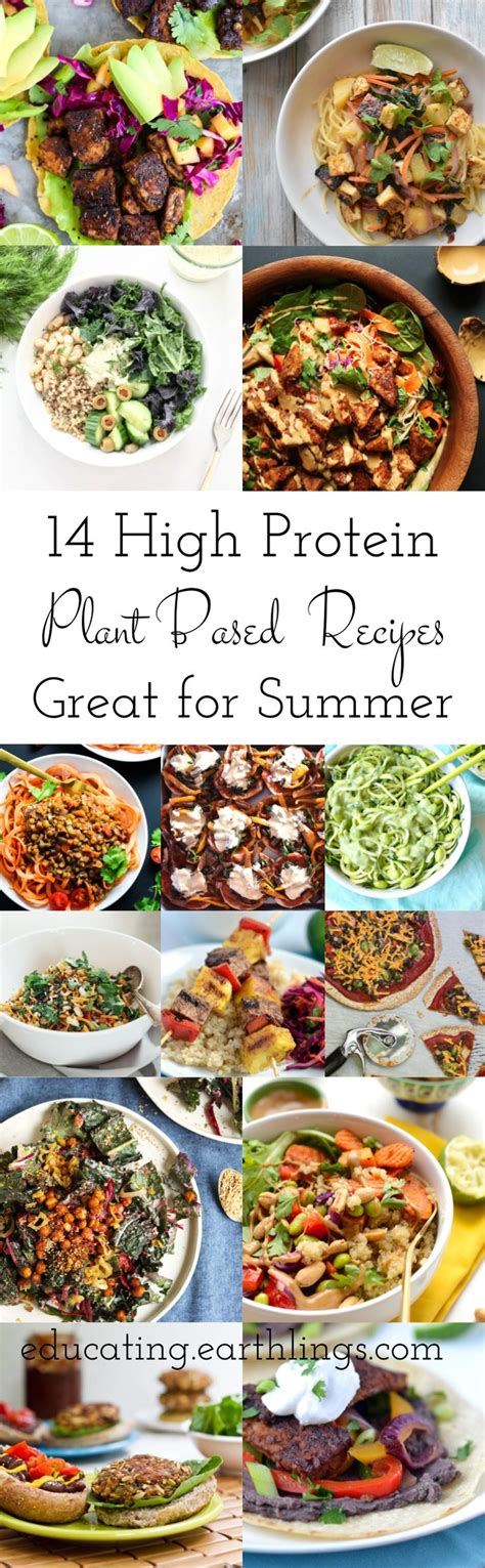 power vegan meals high protein plant based recipes for a stronger healthier you books best 25 high protein vegetarian foods ideas on