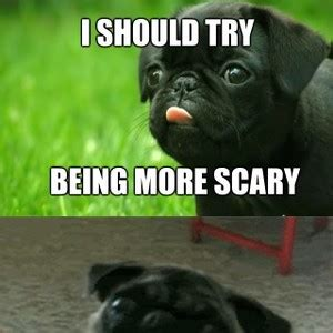 pug child meme scary pug is scary by pagge2k meme center