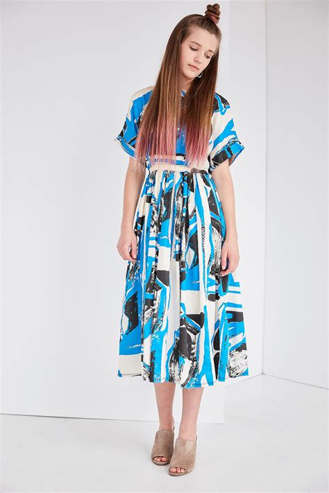 Pleated Dress 16091 Black black crane pleated dress in print black blue garmentory