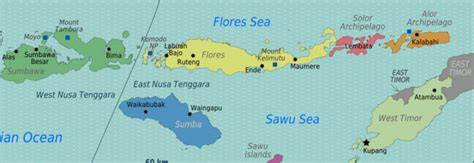 maumere flores indonesia travel guide