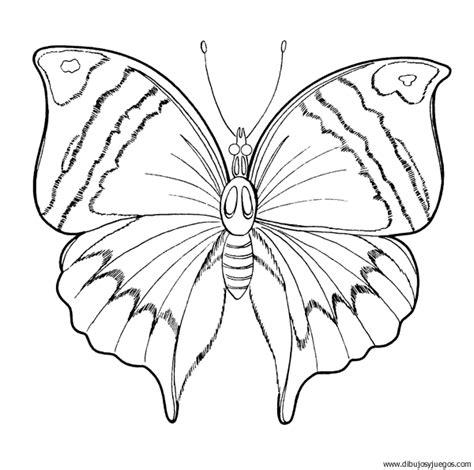 imagenes reales para colorear dibujo de mariposa 058 dibujos y juegos para pintar y