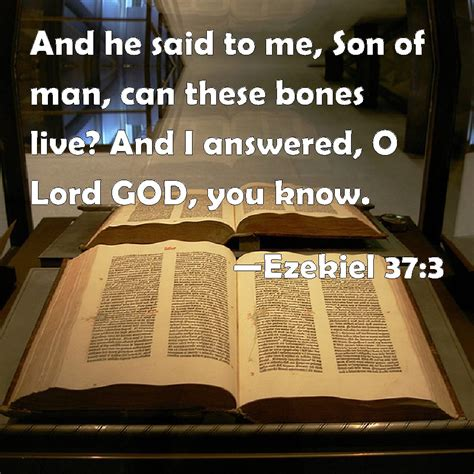These Are The Bones That I Want For My Bathroom I Love | ezekiel 37 3 and he said to me son of man can these