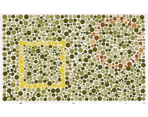 test percezione visiva blia it test per daltonici