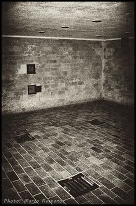 anne frank bathroom the shower heads in the gas chamber in the auschwitz main c