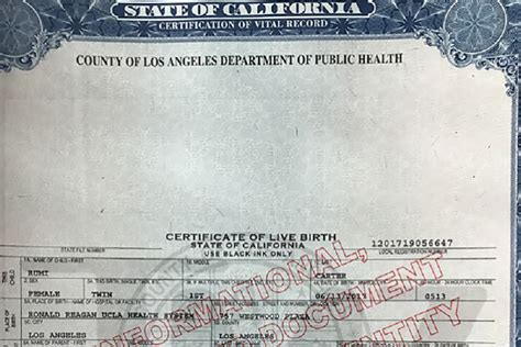 web design certificate los angeles birth certificate california los angeles county images