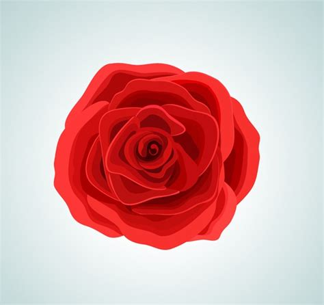 vector rose tutorial red roses vector graphics my free photoshop world