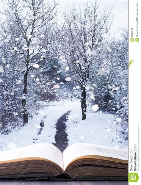 winter books winter woodland book stock photo image of