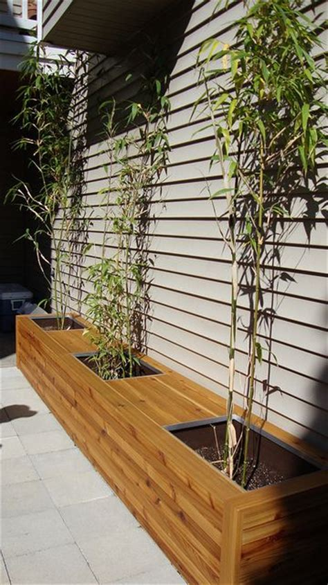 bamboo planter box 1000 ideas about bamboo planter on planters planter boxes and bamboo