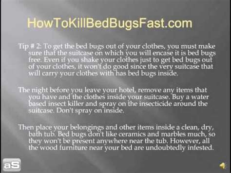 learn how to get the bed bugs out of your clothes quick