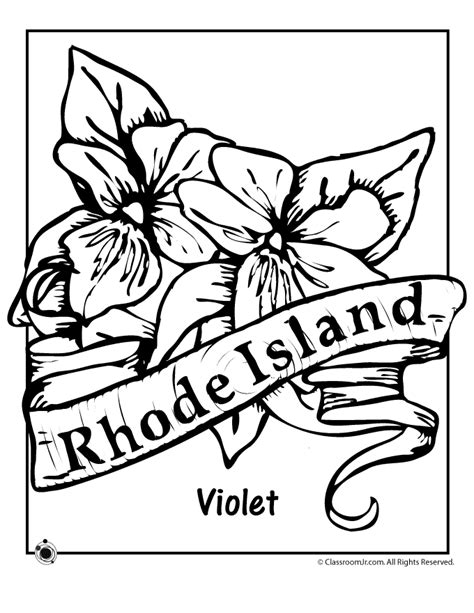 coloring pages of rhode island rhode island state flower coloring page woo jr kids