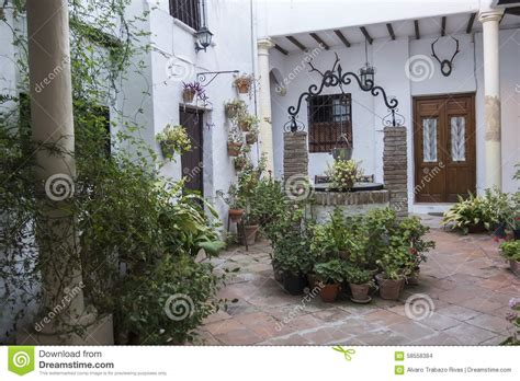 piante da cortile cortile andaluso tipico con molti piante e fiori spagna