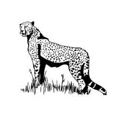 Coloriage Animaux Savane A Imprimer Gratuit
