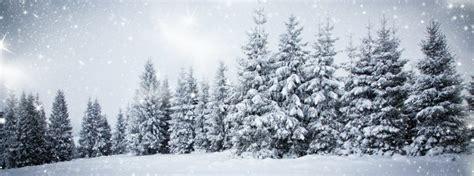 christmas tree farms  acres    monroeville nj