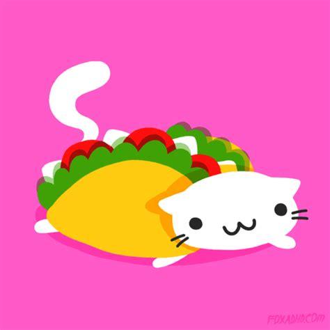 imagenes de tacos kawaii taco cat tumblr