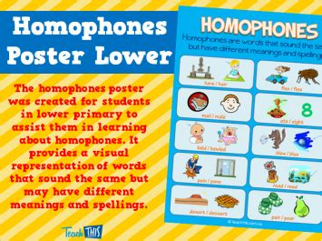 printable homophone poster create a noun group middle upper primary fun