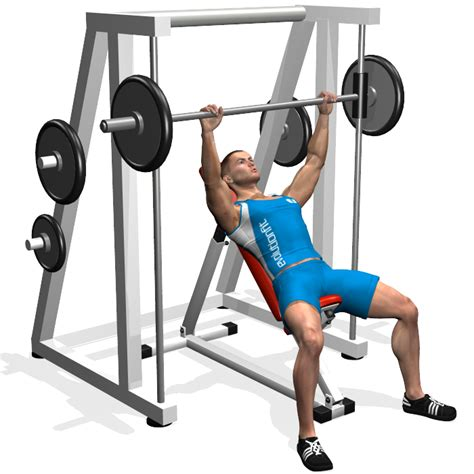 bench press smith evolutionfit inclined bench press smith machine