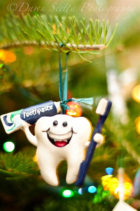 nikon dental hygienist oralhealth ornament